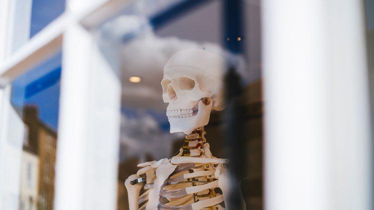 Zijn botten een sleutel tot een langer leven?